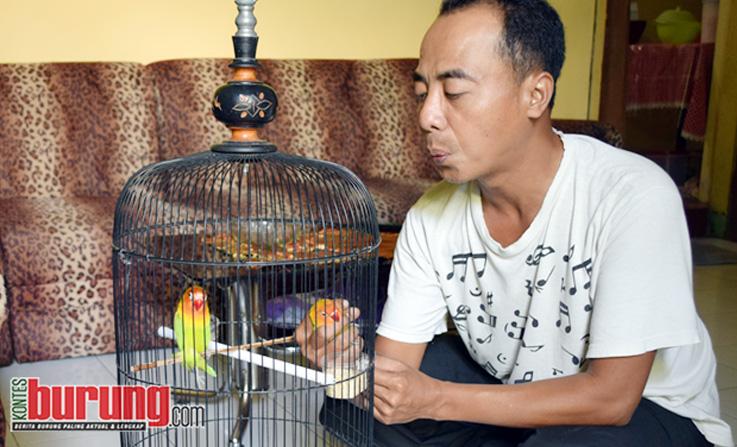Rahasia Rawatab LB Tina Toon Milik Mr.Muhdor Jember