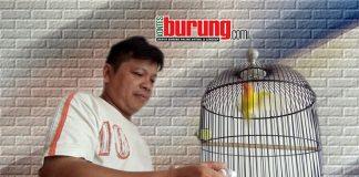 Henky Bor Bintaro Tangerang,
