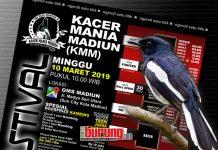 Kacer Mania Madiun